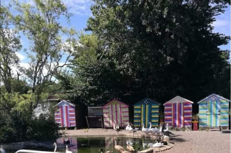 Upcycled duck houses with cheap and reusable paint.